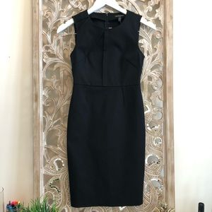 Banana Republic Sheath Dress 00P